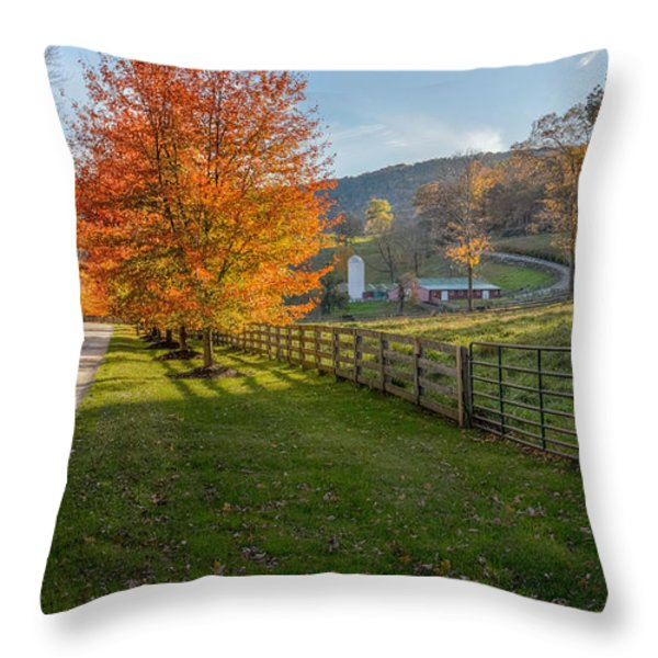 Back Roads Throw Pillow by Bill  Wakeley