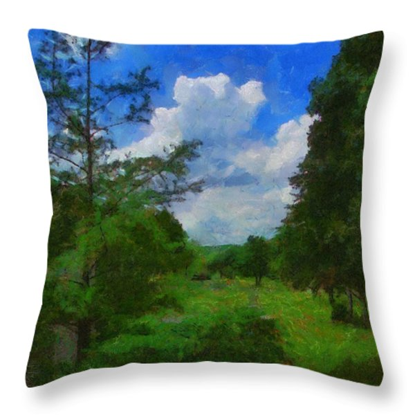 Back Yard View Throw Pillow by Jeff Kolker
