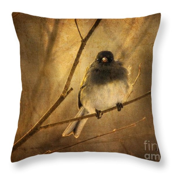 Backlit Birdie Being Buffeted  Throw Pillow by Lois Bryan