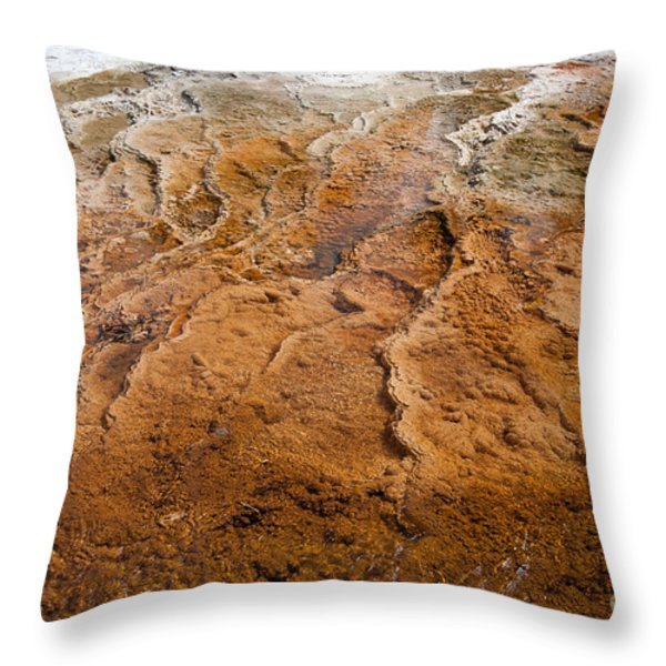 Bacterial Mat 7 Throw Pillow by Dan Hartford