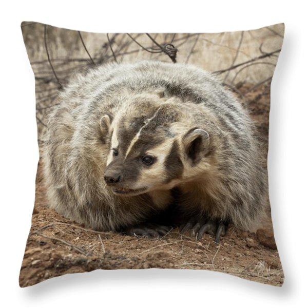 Bad Attitude Throw Pillow by Sandra Bronstein