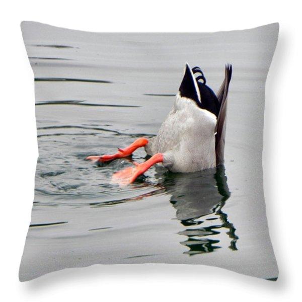 Bad Landing Throw Pillow by Deb Halloran
