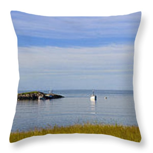 Bailey's Mistake Panorama Throw Pillow by Marty Saccone