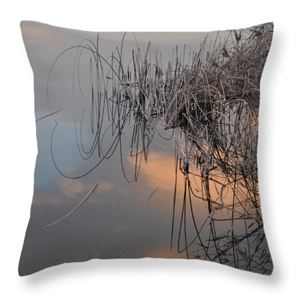 Balance Of Elements Throw Pillow by Simona Ghidini