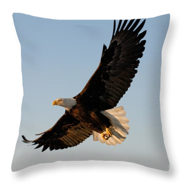 Bald Eagle Flying with Fish in its Talons Throw Pillow by Stephen J Krasemann