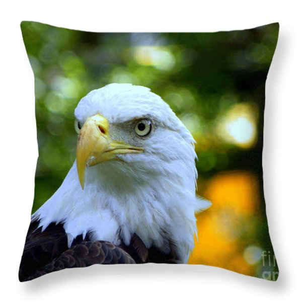 Bald Eagle Throw Pillow by Terri Mills