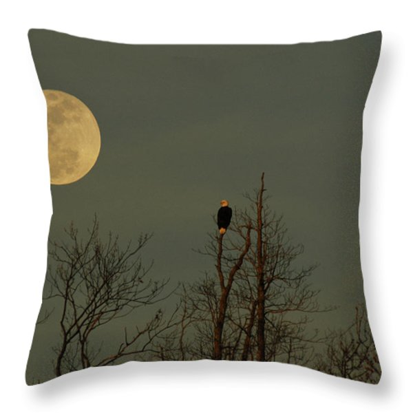 Bald Eagle Watching The Full Moon Throw Pillow by Raymond Salani III