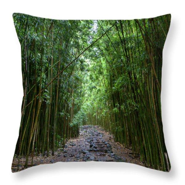 Bamboo Forest Trail Hana Maui Throw Pillow by Dustin K Ryan