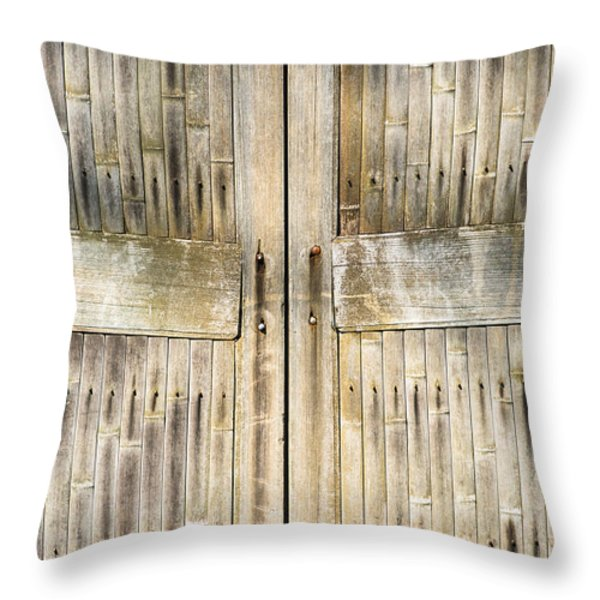 Bamboo Gates Throw Pillow by Alexander Senin