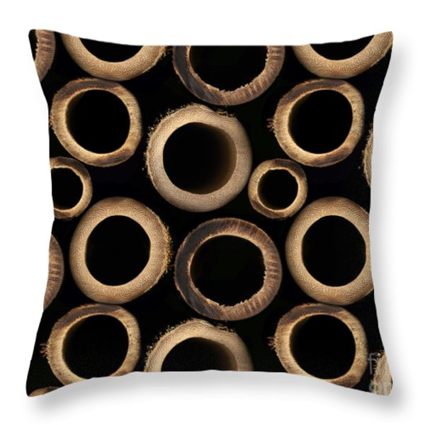 Bamboo Rings Throw Pillow by Bedros Awak