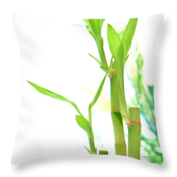 Bamboo Stems and Leaves Throw Pillow by Olivier Le Queinec