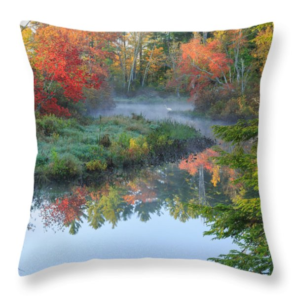 Bantam River Autumn Square Throw Pillow by Bill  Wakeley