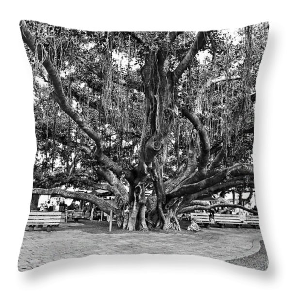 Banyan Tree Throw Pillow by Scott Pellegrin