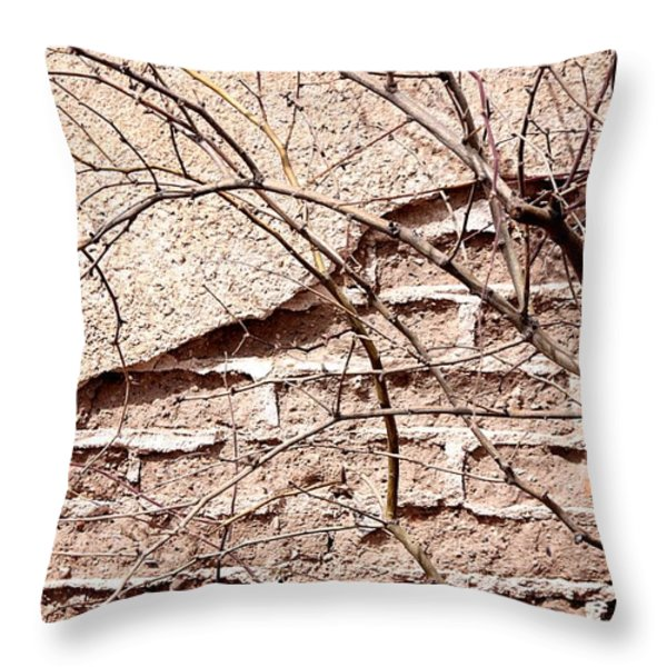 Bare Tree Adobe Wall Throw Pillow by Joe Kozlowski