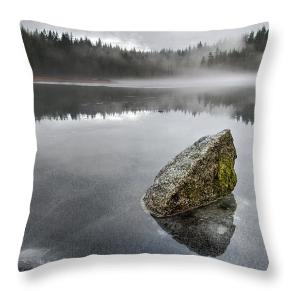 Barely Frozen Throw Pillow by James Wheeler