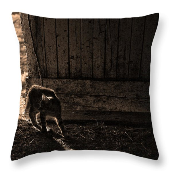 BARN CAT Throw Pillow by Theresa Tahara