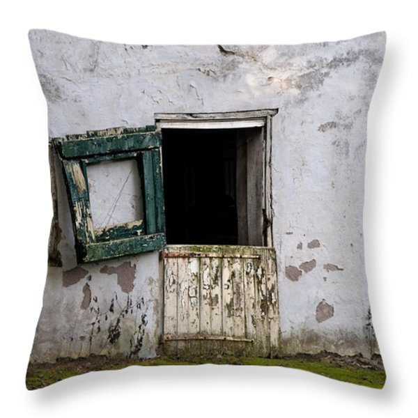 Barn Door in Need of Repair Throw Pillow by Bill Cannon