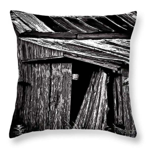 Barn Doors Throw Pillow by Walt Foegelle