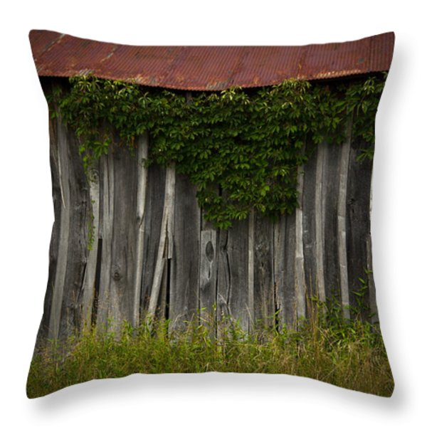 barn eyes Throw Pillow by Shane Holsclaw