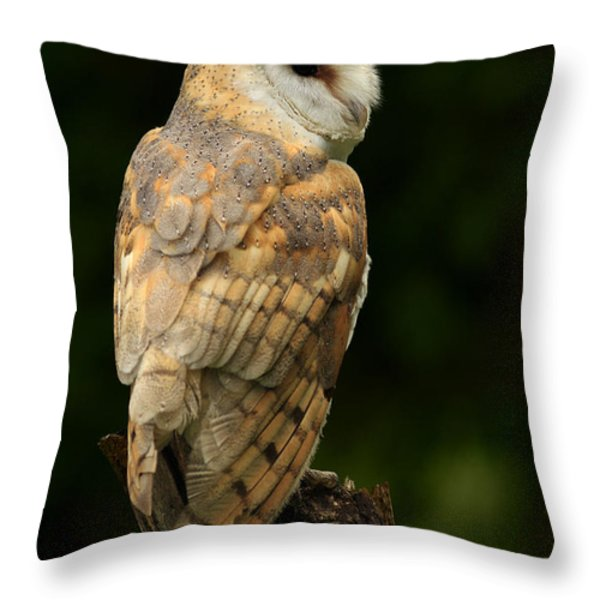 Barn Owl At Twilight Throw Pillow by Inspired Nature Photography By Shelley Myke