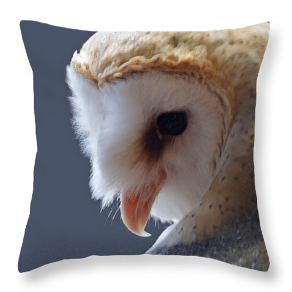 Barn Owl Dry Brushed Throw Pillow by Ernie Echols
