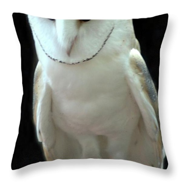 Barn Owl. Throw Pillow by Kathleen Struckle