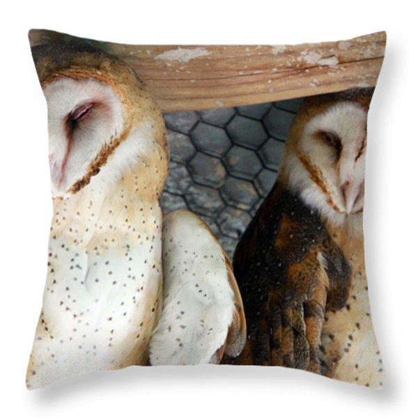 Barn Owls Throw Pillow by David Yunker