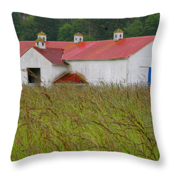 Barn With Blue Door Throw Pillow by Art Block Collections