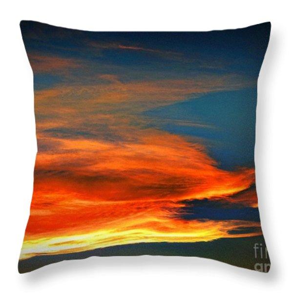 Barracuda Cloud Throw Pillow by Phyllis Kaltenbach