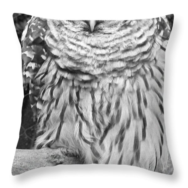 Barred Owl In Black And White Throw Pillow by John Telfer