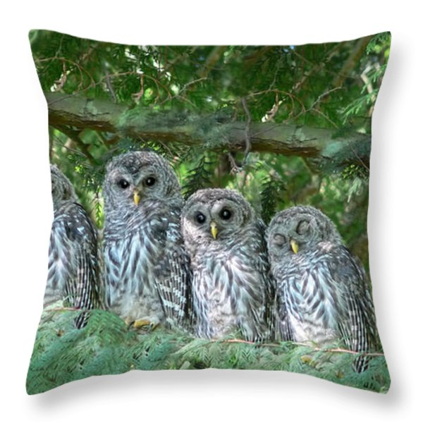 Barred Owlets Nursery Throw Pillow by Jennie Marie Schell