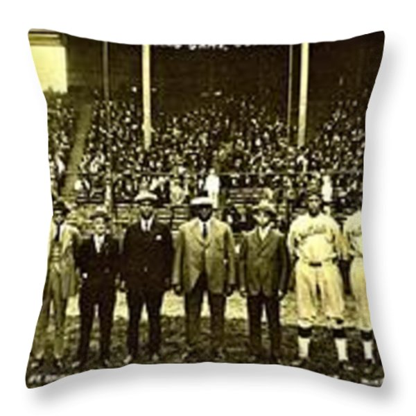 Barriers Throw Pillow by Benjamin Yeager