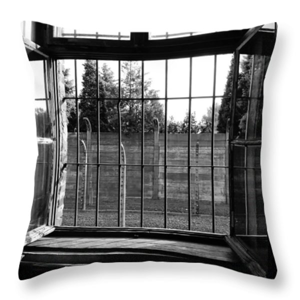 Bars of Misery Throw Pillow by Mountain Dreams