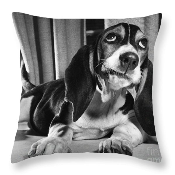 Basset Hound Puppy Throw Pillow by ME Browning