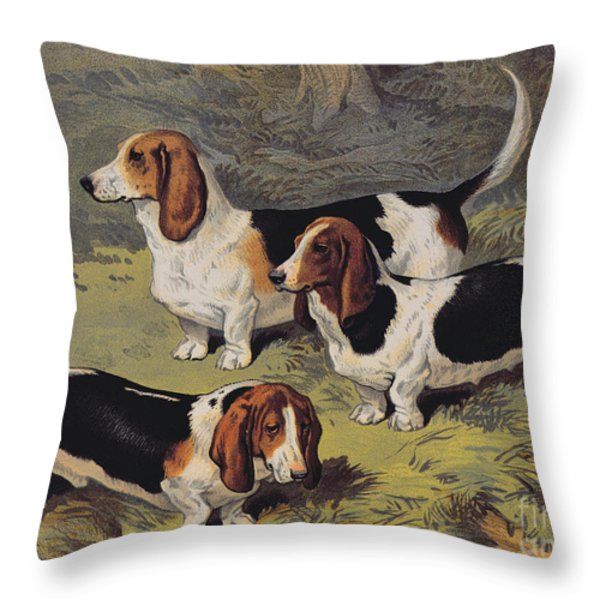 Basset Hounds Throw Pillow by English School
