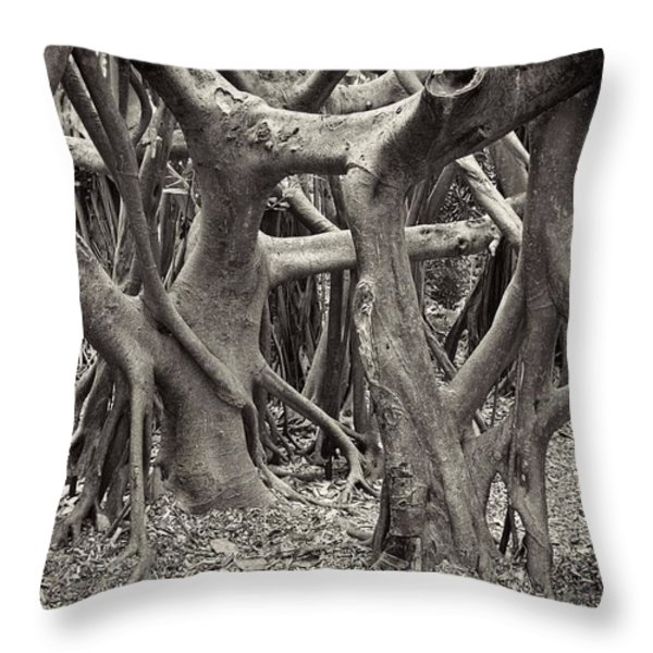 Baynan Roots Throw Pillow by Rudy Umans