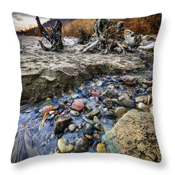 Beach brook at Scarborough Bluffs Throw Pillow by Elena Elisseeva