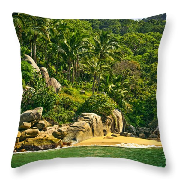 Beach In Mexico Throw Pillow by Elena Elisseeva