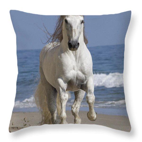 Beach Run Throw Pillow by Carol Walker