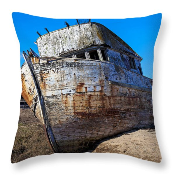 Beached Point Reyes Throw Pillow by Garry Gay