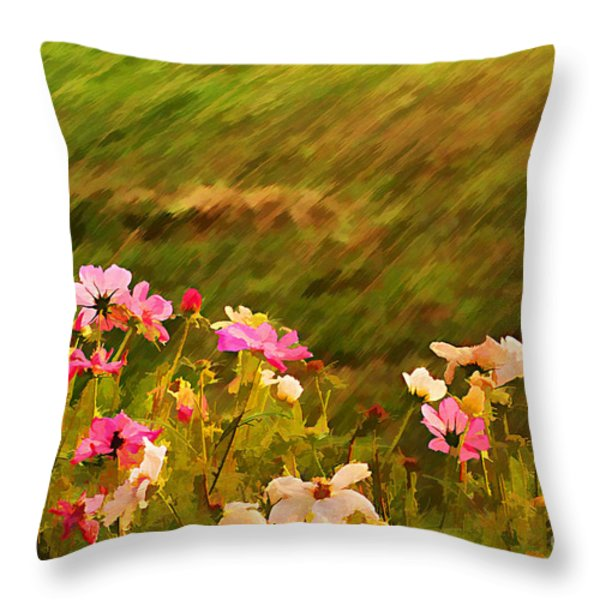 Beautiful Cosmos Throw Pillow by Darren Fisher