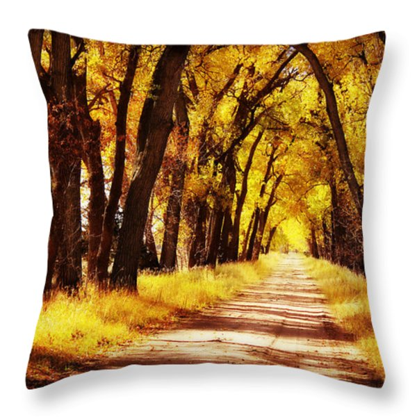 Beautiful Fall Day in Nebraska Throw Pillow by Julie Hamilton