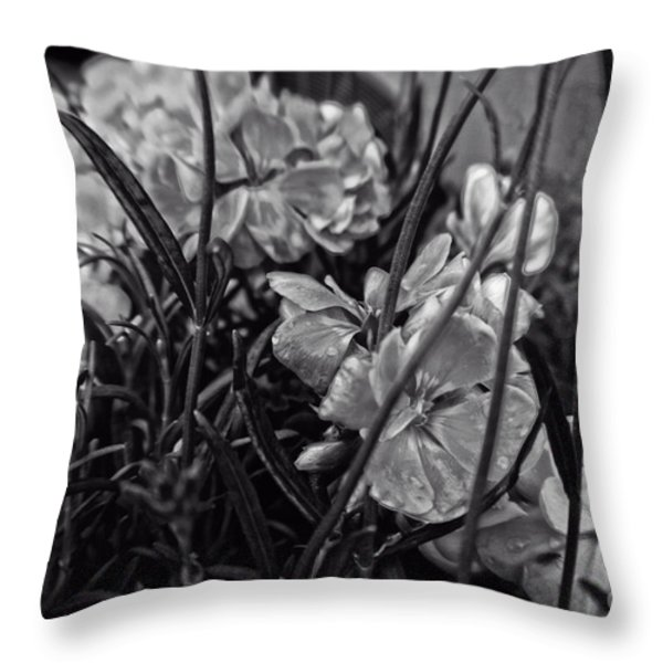Beautiful Floral Blossoms Throw Pillow by Michael Braham