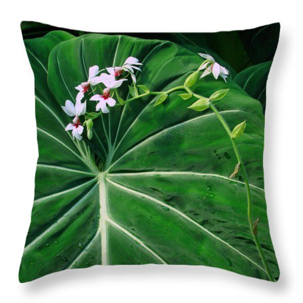 Beautiful Ivory Veins Of A Philodendron Throw Pillow by Sue Melvin