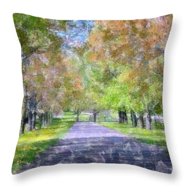 Beautiful Pathway Throw Pillow by Kathleen Struckle