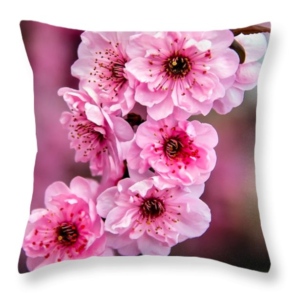 Beautiful Pink Blossoms Throw Pillow by Robert Bales