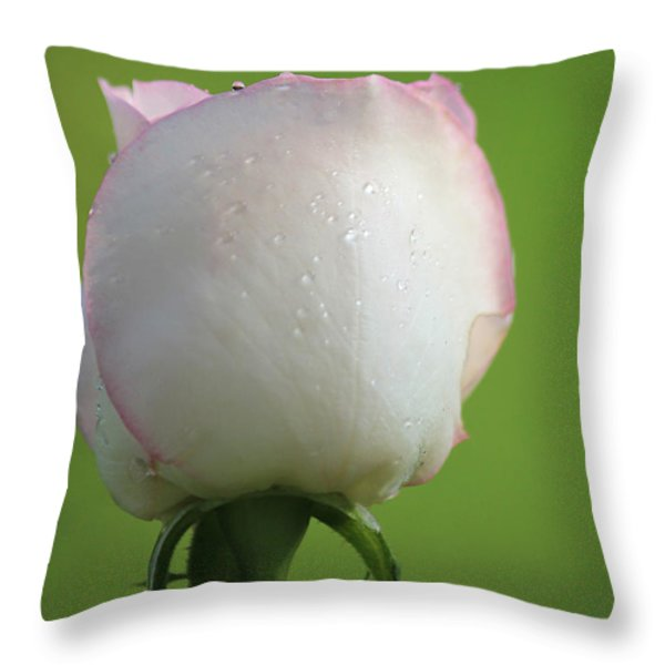 Beautiful Promise Throw Pillow by  The Art Of Marilyn Ridoutt-Greene