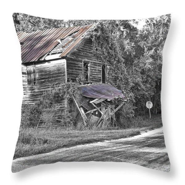 Beautifully Decrepit Throw Pillow by Scott Hansen