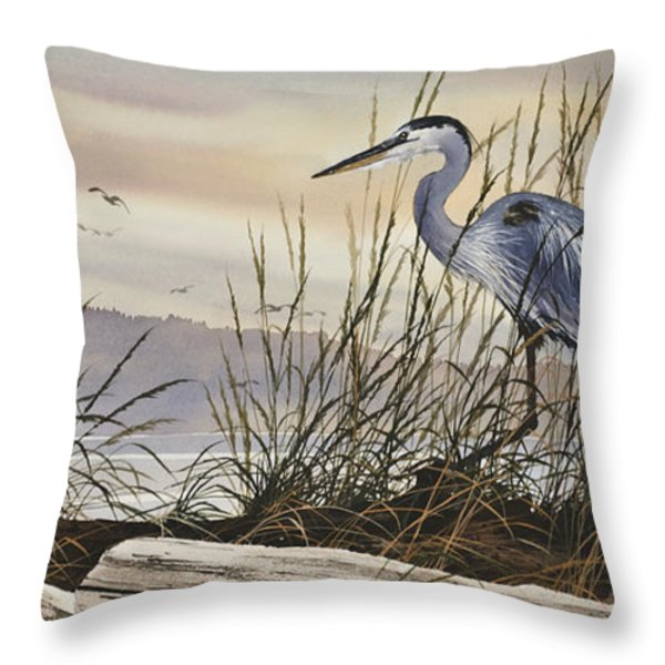 Beauty Along The Shore Throw Pillow by James Williamson