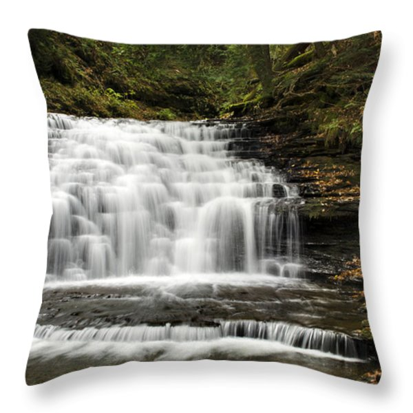 Beauty Falls Throw Pillow by Christina Rollo